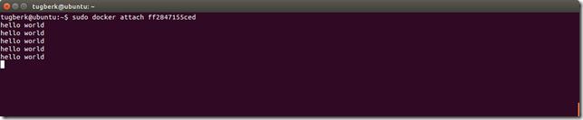 Screenshot from 2015-07-13 06^%39^%43