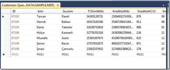 sql-injection-demo-project-data-view-for-sql-database-structure